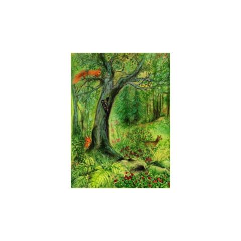 L'arbre qui poussait à travers le toit, livre enfant  illustré waldorf steiner iona