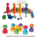 Jeu de tri, champignons arc en ciel, jouet en bois ecologique montessori, Grimm's