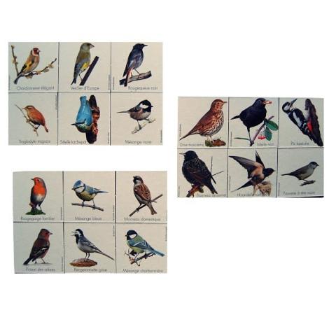Mémo nature, oiseaux des parcs et jardins 3 jeux en 1 de betula france